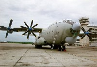 An-22 Cock